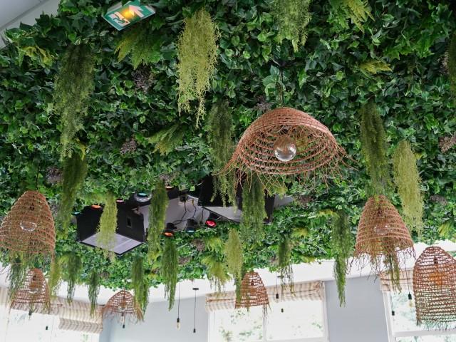 Les Pieds dans l'Herbe <br> au Pavillon de la Tourelle Salle des fêtes - Évènements